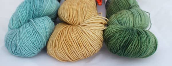 Yarn from The Golden Skein's Autumn Harvest Club. Below, the image (from tranuf, via Flickr) that inspired the colors.