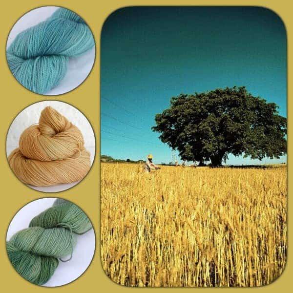TGSAutumn-Harvest