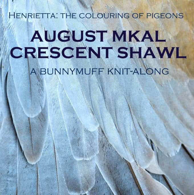 "An image of grey feathers and the words ""Henrietta: The Colouring of Pigeons. August MKAL Crescent Shawl. A Bunnymuff Knit-Along."""