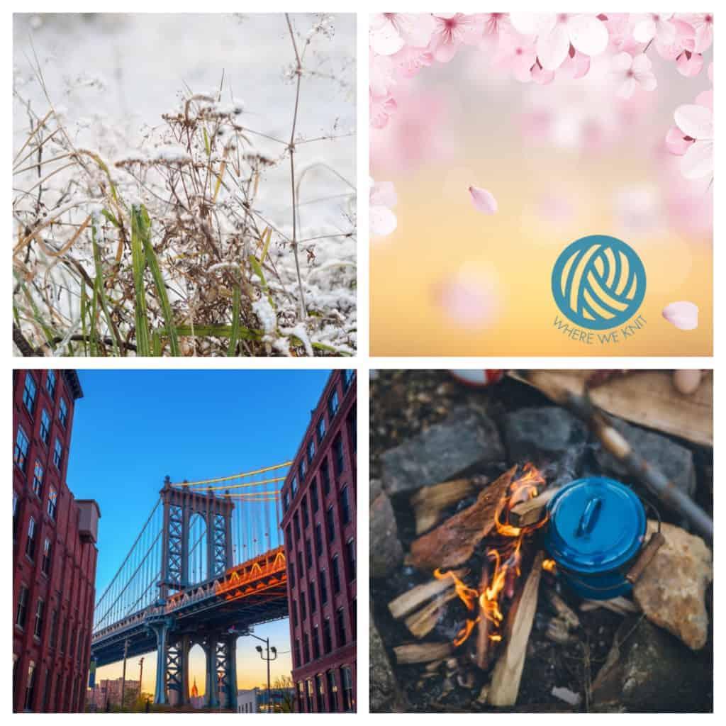 A collage with winter flowers, cherry blossoms, a blue put over a campfire and the Manhattan Bridge.
