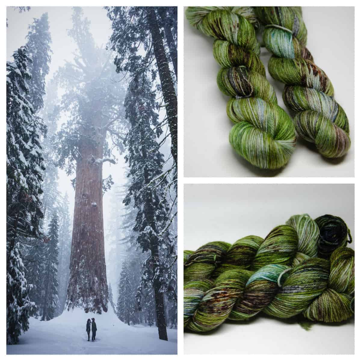 A snowy forest and green yarn.