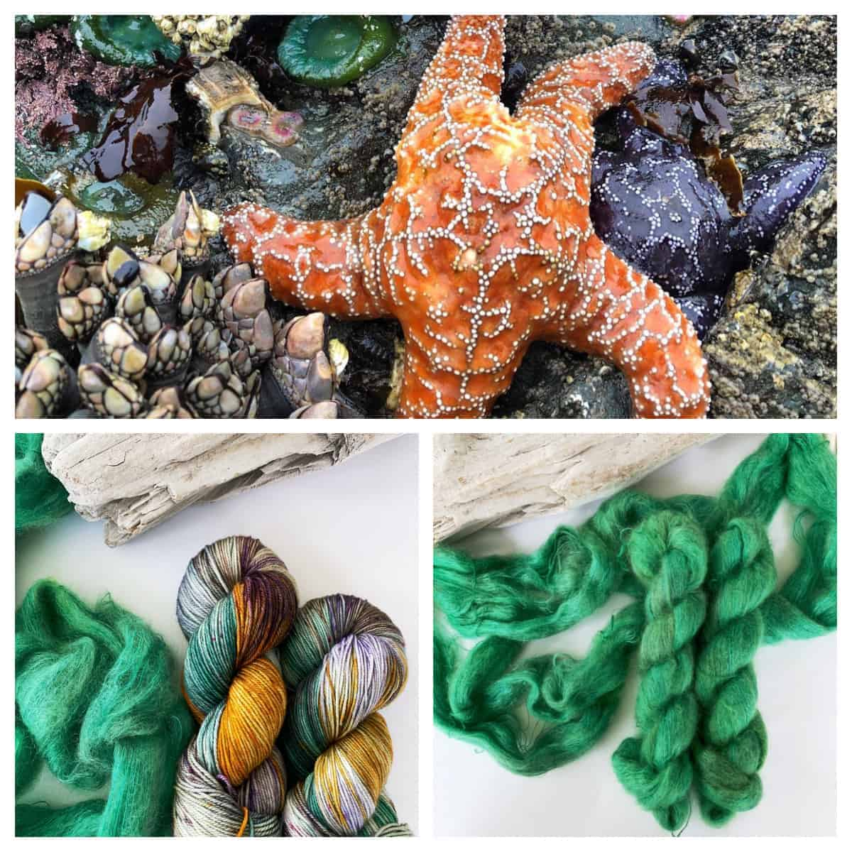 An orange starfish and orange, purple and green yarn.