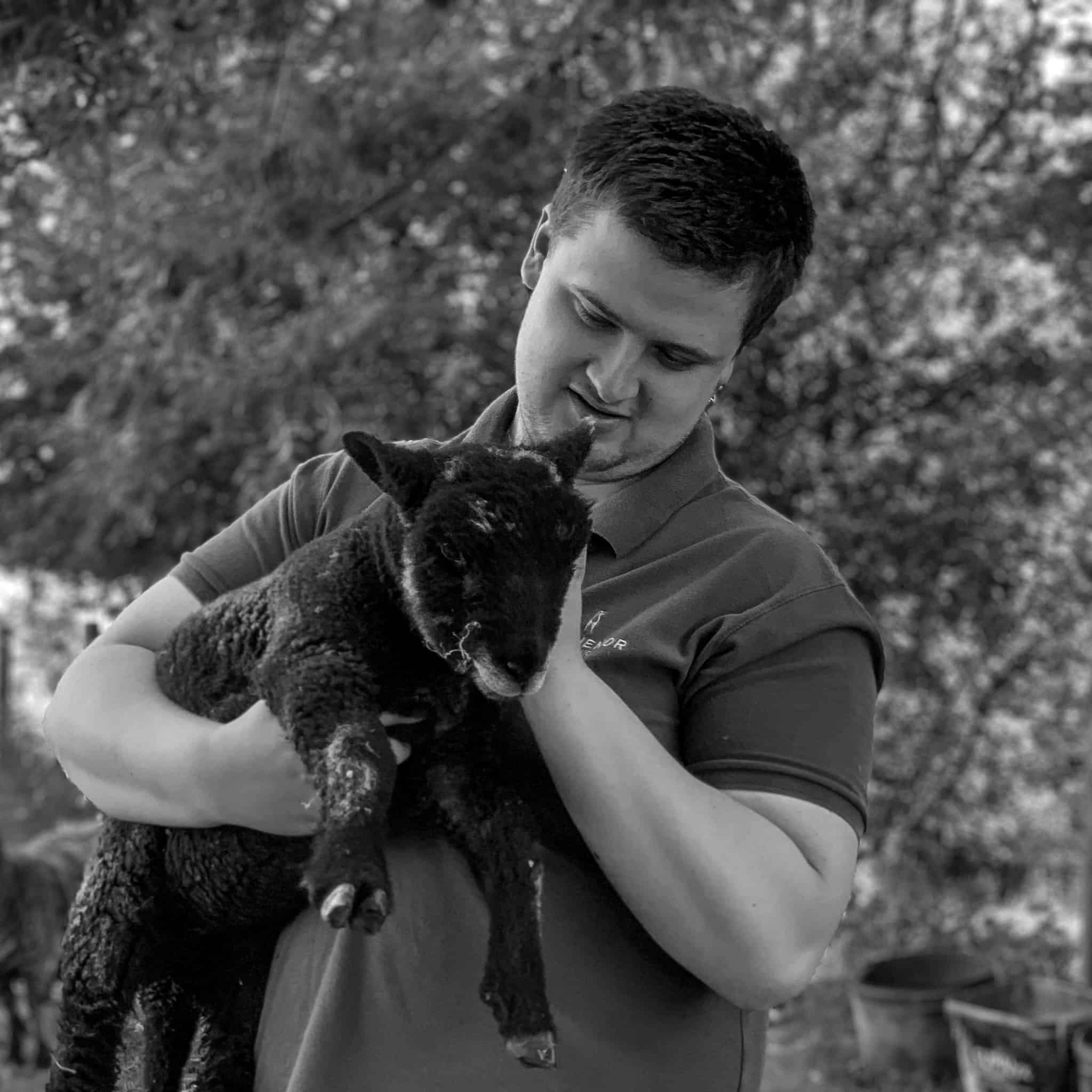 A black and white image of a man holding a dark lamb.